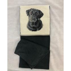 Μπλουζάκι Minnions -